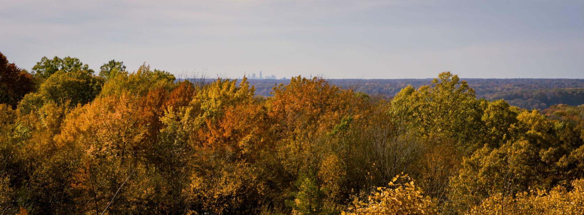 Autumn in City of Kirtland Ohio