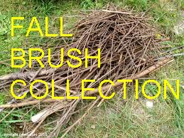 Fall Brush Collection
